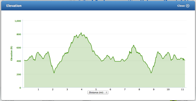 Garmin Connect elevation profile of the bike course - KOH indeed
