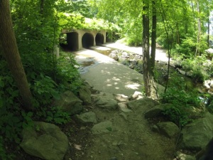 Stay left on the short rocky incline before the culvert, and ride through the left most tunnel