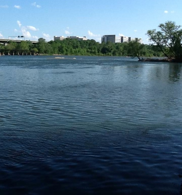 Swim across the James River to Belle Isle