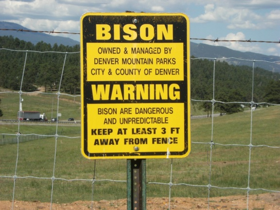 BISON - owned and manged by denver mountain parks city and county of denver. WARNING - bison are dangerous and unpredictable. Keep at least 3 ft away from fence