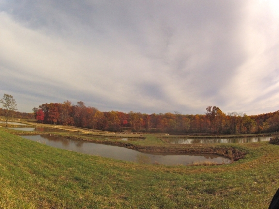 More shallow dug out ponds along the level ground adjacent to Putnam Road, with a line of fall colored trees in the distance
