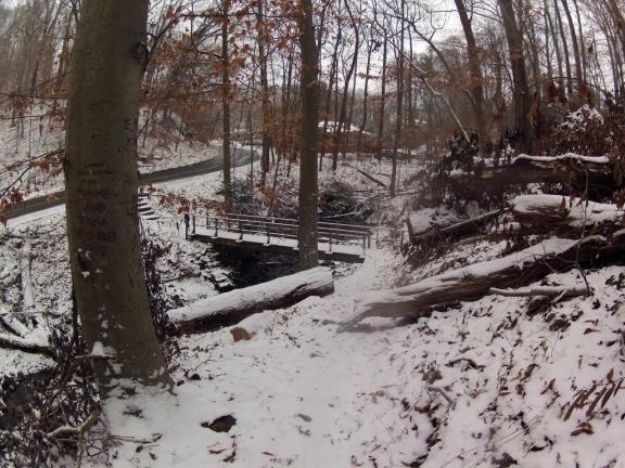 Snow covered single track leading to a wooden pedestrial bridge, tall trees are abound