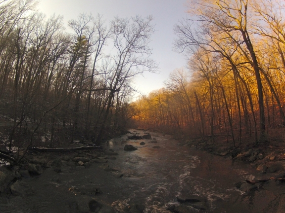 Overlooking Rock Creek, the rising sun makes the trees on the right bank of the river appear bright orange