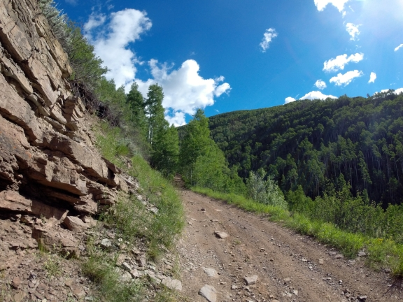 steep dirt road with Aspen trees lining each side ahead, a pine covered steep ridge lies to the west, above June Creek