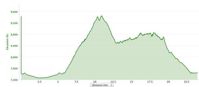 Miles 5-20 capture the elevation profile of the bike course, the initial climb is a doozy