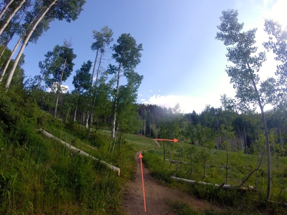 Hang a right down Cinch, a dirt service road at the end of the Aspen Glade trail