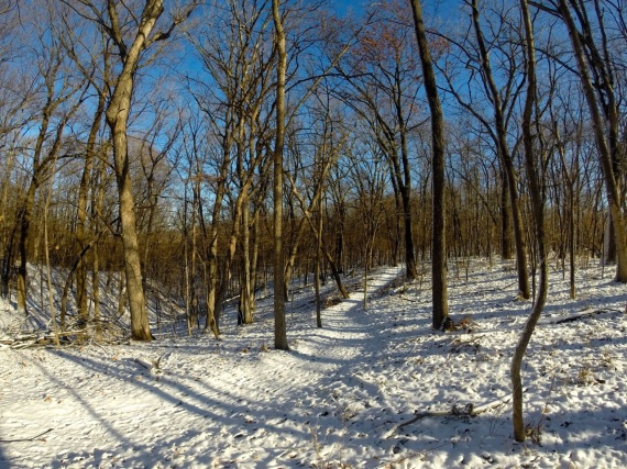 Snow covered trail through the trees at Squire Point.