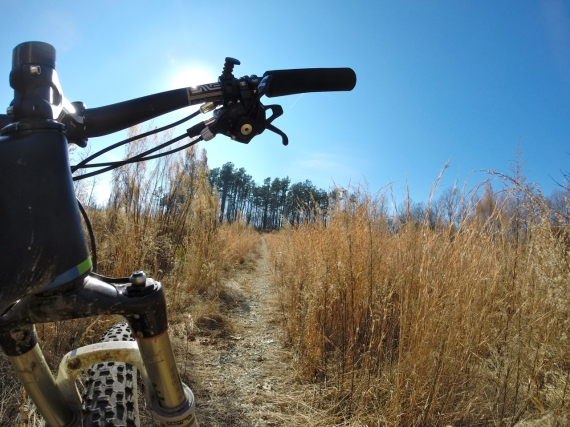View from below the handlebar, up an incline on a trail cutting through tall brown grasses.