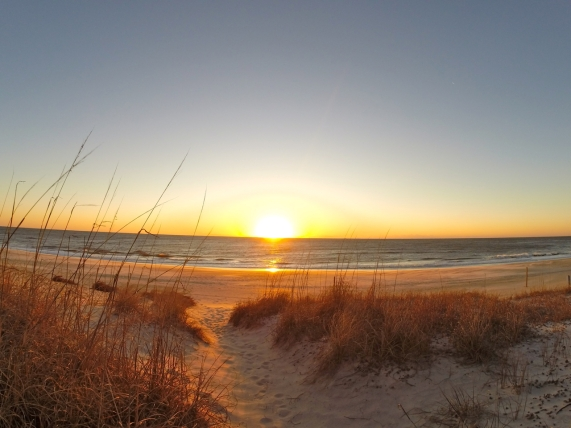Serene beach view with sun rising on the horizon. Light sandy beach with scrubby brown grasses on the dunes.
