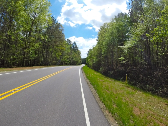 Two lane road with dark asphalt pavement and bright white and double yellow lane lines stretching out ahead into the distance. Tall green trees stretching up toward the bright blue sky on both sides.
