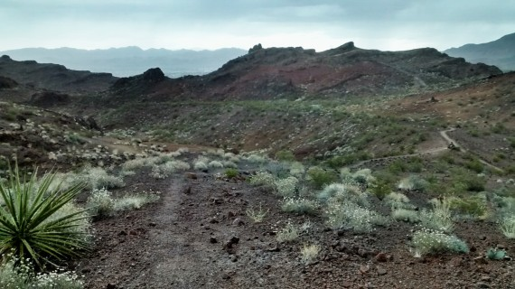 Coming from the east coast, I especially appreciate the never ending views of hiking in the desert.