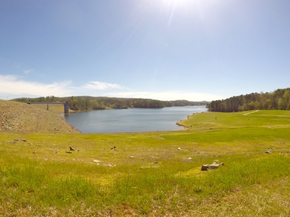 Grass surrounding small finger of reservoir at Kerr Scott Dam.