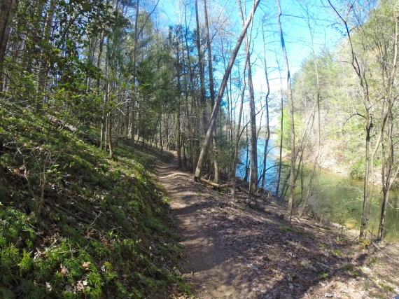Forested natural surface trail on hillside, reservoir visible through the trees.
