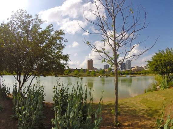 Birmingham skyline in the distance, water feature and plants in Railroad Park in the foreground.