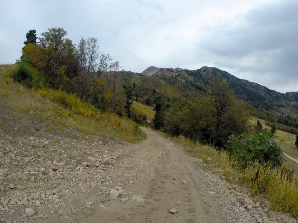 The last steep fire road pitch before hitting the singletrack.