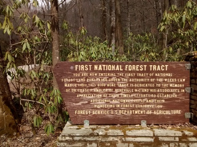 1 - First National Forest Tract